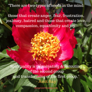 _There are two types of seeds in the mind_those that create anger, fear, frustration, jealousy, hatred and those that create love, compassion, equanimity and joy.