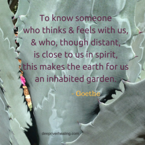 """To know someone who thinks & feels with us, & who, though distant, is close to us in spirit, this makes the earth for us an inhabited garden.""""― Goethe"""