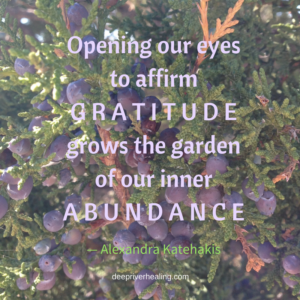opening-our-eyes-to-affirm-gratitude-grows-the-garden-of-our-inner-abundance
